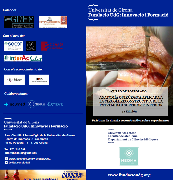 Lesiones osteocondrales en la extremidad superior