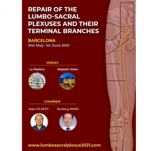 REPAIR OF THE LUMBO-SACRAL PLEXUSES AND THEIR TERMINAL BRANCHES @ Barcelona
